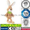 Peter Rabbit Soft Stuffed Baby van het Konijntje van Ce kalmeer kalmeren Stuk speelgoed