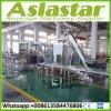 del agua automática del barril 900bph máquina de rellenar 20L con precio de fábrica