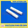 Fornire il calibro di Pin di ceramica di 10mm Y-Zp/Zro2/Zirconia