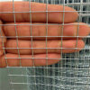 3/4*30m Galvanized Welded Wire Mesh