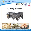 Taglio Machinery per Wafer in Production Line