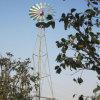 Entrega de bombeamento elevada do deserto da floresta da maquinaria da água da bomba do moinho de vento da irrigação