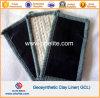 Gcl 입히는 HDPE 필름 강선 Geomembrane