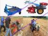 중국 걷는 트랙터 소형 단 하나 감자 수확기