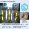 Acetato 100 Tren de Trenbolone un esteroide líquido inyectable de Finaplix H/Revalor-H