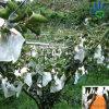 Tela não tecida não tecida da agricultura da tela da coberta vegetal do saco da banana da tampa da fruta