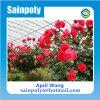 Serra di vetro della Multi-Portata di vendita calda per il fiore