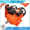 Motore a corrente alternata Di Yc 110V per le macchine utensili con le bobine di rame