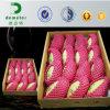 주문을 받아서 만들어진 FDA 승인되는 EPE 거품 플라스틱 청과 포장 그물