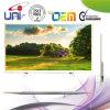 Qualité d'illustration élevée une pente plein HD 50-Inch DEL TV