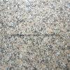 طقطقة تعقّب هويس طبيعيّة حجارة فينيل لوح يبلّط