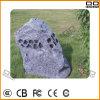 Altoparlante del prato inglese del giardino di Qqchinapa (il CE LCP-918 approva)