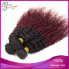 7A Virgin Kinky brasiliano Curly Beauty Ombre Hair Extension