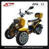 trotinette aprovado de pé adulto do adulto 50cc Trike do gás EPA