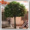 Ficus artificiais decorativos internos feitos de fibra de vidro