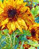 Abstraktes Lastest Sunflower Painting auf Canvas für Wohnzimmer für Holiday Gift Wholesale (LH417000)