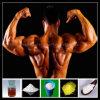 سترويد مسحوق [رو متريل] عضلة بناية هرمون كيميائيّ [مثنولون] [أستت]