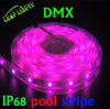 Indicatore luminoso di striscia del rame 5050 LED di DC5V 32LEDs/M Ws2801
