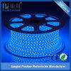 Jiangmen Factory 220V 4.8W Waterproof LED Strip