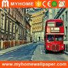Collant à la maison de peinture murale de mur d'allumeur de papier peint de décoration