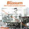 Chaîne de production carbonatée de machine de remplissage de boisson