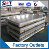 Het roestvrij staal Geperforeerde die Blad van het Metaal in China wordt gemaakt