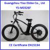 bici elettrica della gomma grassa di 350W 500W