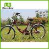Hohes elektrisches Stadt-Fahrrad 250W 36V der Kosten-Leistung Grün-Dame-Ebike