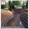 Galvanized/PVC revestido/cesta de Gabion para o banco de rio