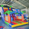 Gutes Quality Giant Inflatable Water Slide für Children/Huge federnd Slide