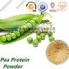 제조 비 Gmo 유기 완두 단백질 분말