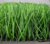 Трава дерновины ковра для футбола (c50)