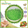 Água de 100% - fertilizante solúvel 20-10-30 de NPK+Te
