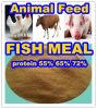 Fische Feed von Fish Meal mit 72% Protein
