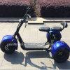 trotinette de Citycoco Harley com Ce