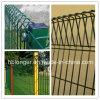 Rete fissa galvanizzata ricoperta Fencing/PVC della rete metallica della parte superiore di rullo