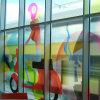 Decorazione di vetro della natura della pellicola della finestra di colore completo