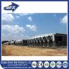 Het Huis van de Kip van het Huis van het Gevogelte van de Structuur van het staal/de Loods van de Kip