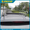 보편적인 디자인 최신 판매 강철 지붕 수화물 운반대 (RR109)