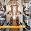 Профессиональная конструкция дома цыпленка яичка для большой птицефермы