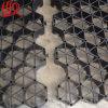 Zwarte Grass Pavers voor Parkeerterrein