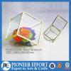 금 꽃 화병 기하학적인 명확한 유리제 플랜트 Terrarium