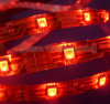 Strisce del LED, luce di striscia del LED
