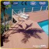 El CE, ISO, SGS, TUV fácil instala Decking de WPC