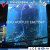 Aquários de tanque de peixe acrílico de alta qualidade