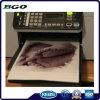 Impression de Digitals de toile de coton de toile d'impression (30  X40  3.8cm)