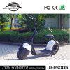 Fabriek die Laagste Prijs en Modieusste Citycoco 2 verkopen de Elektrische Autoped van het Wiel (jy-ES005)