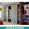 De ruimte bewaart het MultiOntwerp van de Kast van de Garderobe voor Slaapkamer (ais-W332)