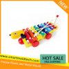 Juguete plástico de la música para el niño de Plastic Mould