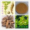 Выдержка Euphorbia выдержки Euphorbia Пекин